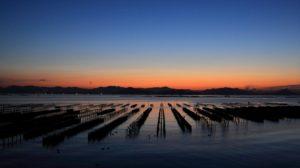 廿日市の牡蠣筏の画像